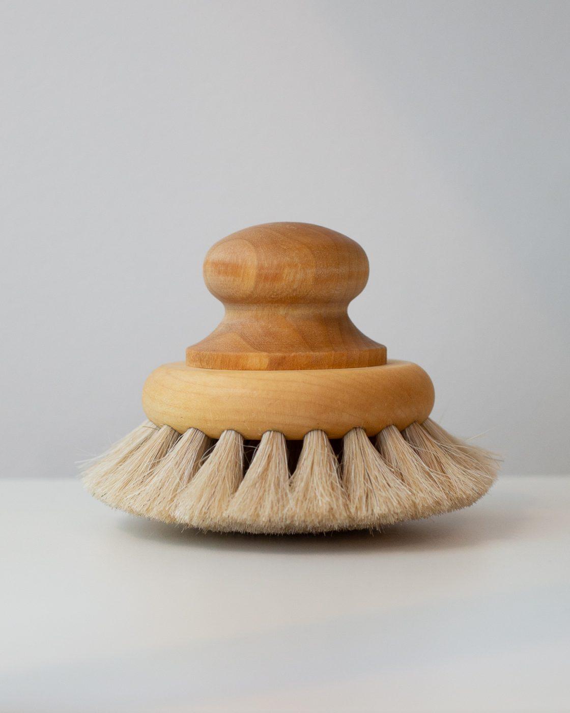 Dry Brush with Knob