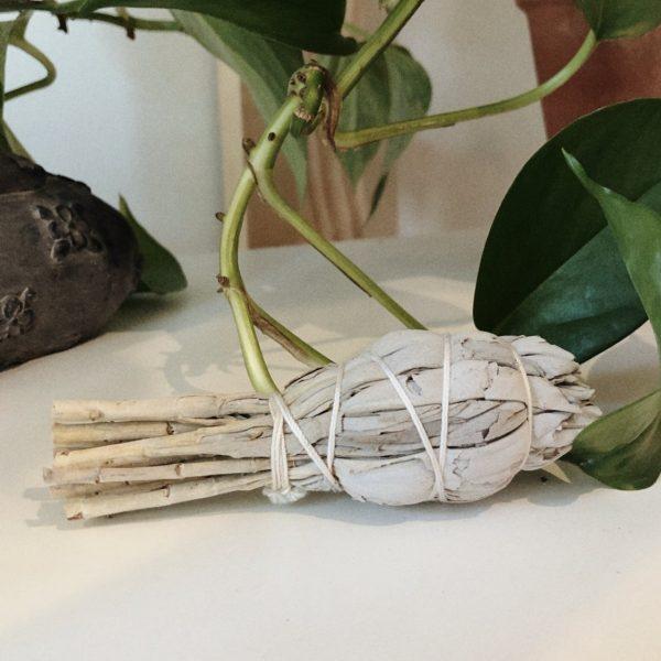 Bundle of wild white sage