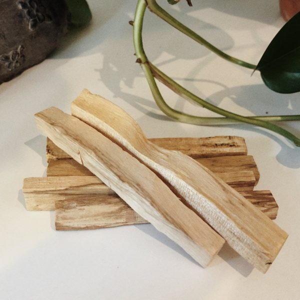 Photo of a small pile of palo santo