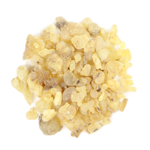 Small pile of Frankincense Resin from Mountain Rose Herbs