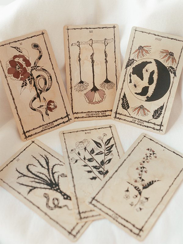 six-cards-from-ophidia-rosa-tarot